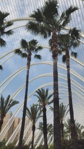 L'umbracle-Valencia-city